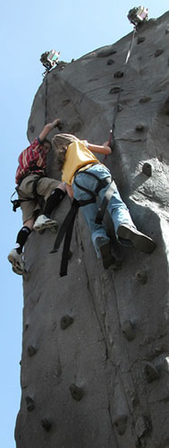 Rock On Climbing Wall